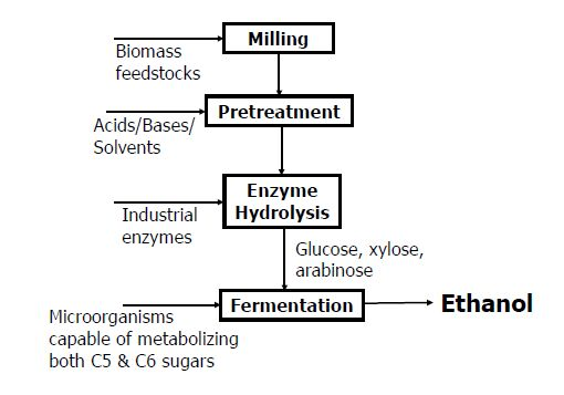 Bioethanol thesis