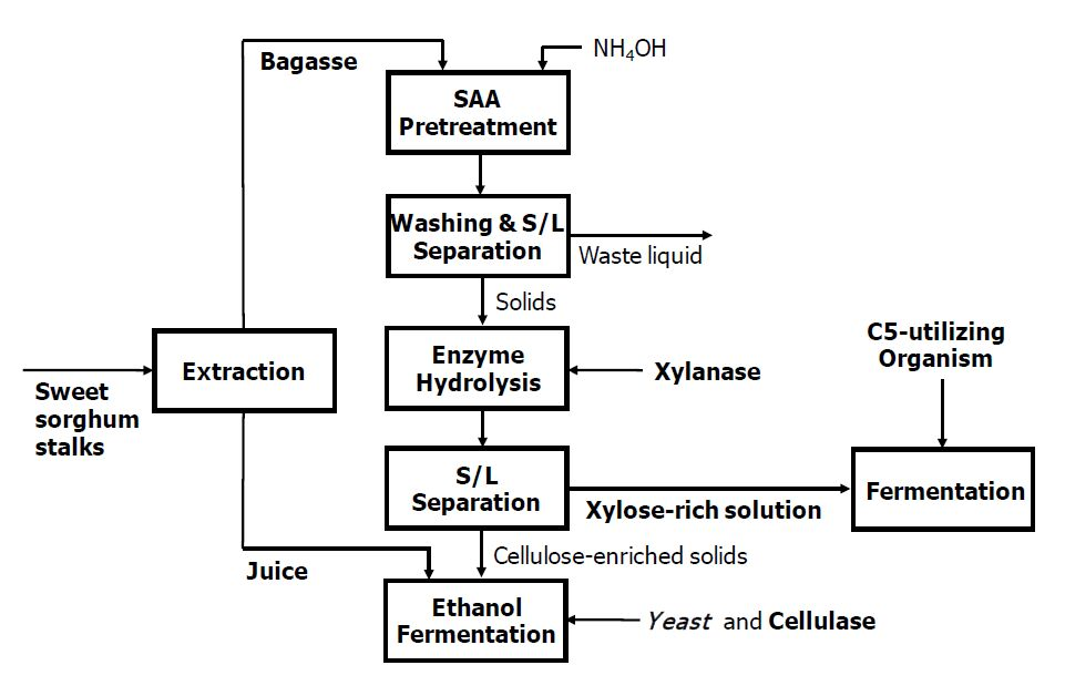 ethanol production from banana peels essay The price of ethanol production in present work banana peels were taken as a major ingredient for production of biodiesel production waste banana peels around 35 kg were taken from different fruit shops located in ropar, punjab.