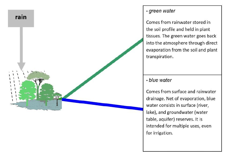 Open access journals according to a scheme proposed by fao the water cycle originates from rain and has two pathways of two different colours ccuart Choice Image