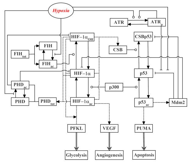 Open Access Journals on layout diagram, ic schematic diagram, a schematic drawing, template diagram, simple schematic diagram, ups battery diagram, as is to be diagram, circuit diagram, a schematic circuit,